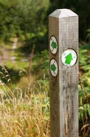 Photo pour Post bridlepath forestier - image libre de droit