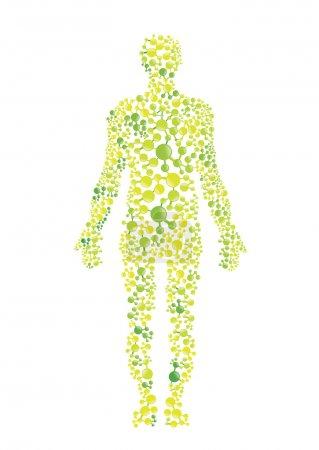 Green human body
