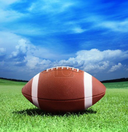 Photo for Football on arena near the 50 yard line - Royalty Free Image