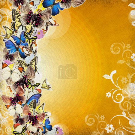 Photo for Grunge beautiful colored abstraction with butterfly and ornate - Royalty Free Image
