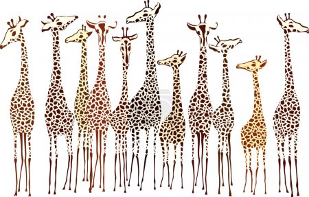 Illustration for Giraffes - Royalty Free Image