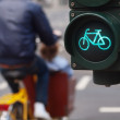 Traffic light bike sign in Germany with man riding...