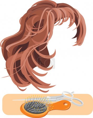 Illustration for Hair, scissors and hairbrush isolated on the white. Vector illustration - Royalty Free Image