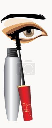 Mascara and female eye