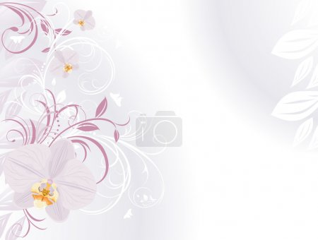 Illustration for Orchids with decorative sprigs. Background for card. Vector illustration - Royalty Free Image