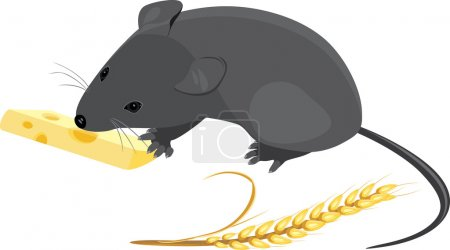 Field mouse with wheat ear and piece of cheese