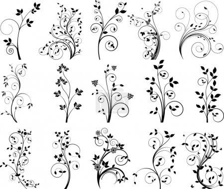 Floral design vector set