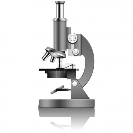 Illustration for Layered vector illustration of Microscope. - Royalty Free Image