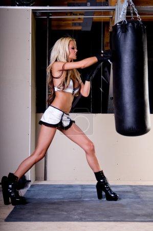 Sexy MMA Fighter