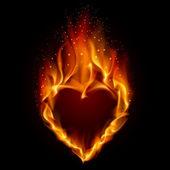 Heart in Fire Illustration on black background for design