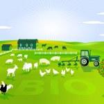 Organic farming...