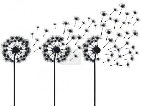 Illustration for Three dandelions - Royalty Free Image