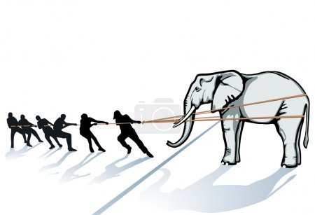 Pull the elephant from the Ice