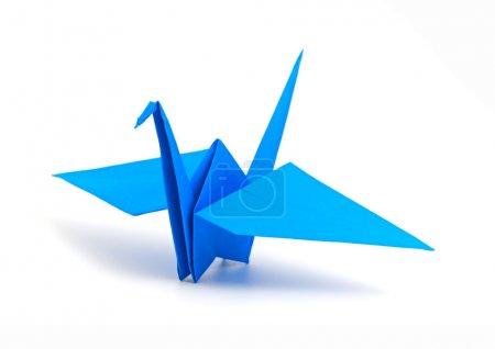 Foto de Origami Grúa aislada sobre un fondo blanco - Imagen libre de derechos