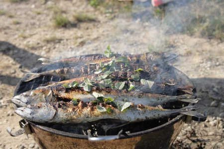 Preparing grilled fishes