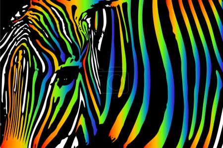 zebra in rainbow colors