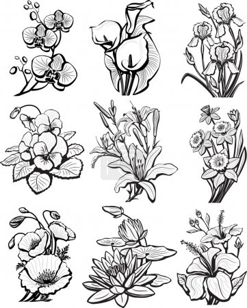 Illustration for Set of sketches of flowers - Royalty Free Image