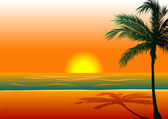 Vector Illustration of Beach Background 1 during sunset sunrise
