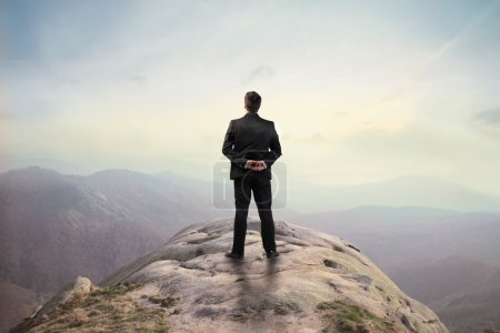 Photo for Businessman standing on a hilltop and observing the panorama - Royalty Free Image