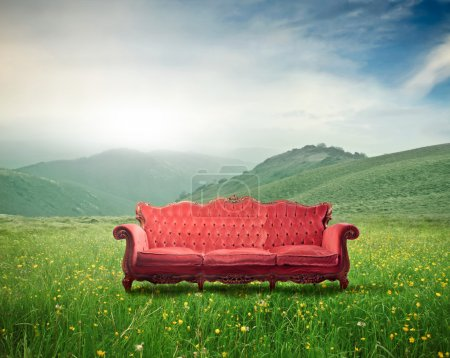 Photo for Old velvet sofa on a green meadow - Royalty Free Image