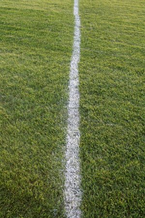 Photo for A white line on an sports playing field. - Royalty Free Image