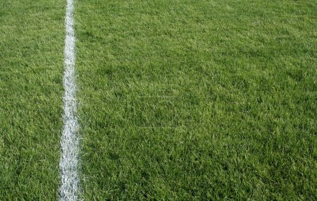 Photo for A closeup of a white line on a grass sports field. - Royalty Free Image