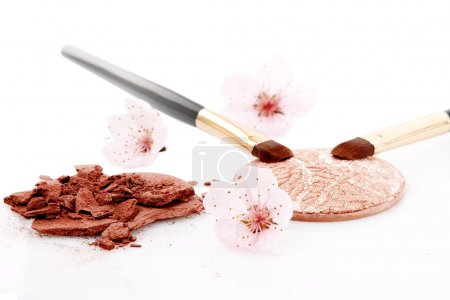 Brown powder for makeup and two brush