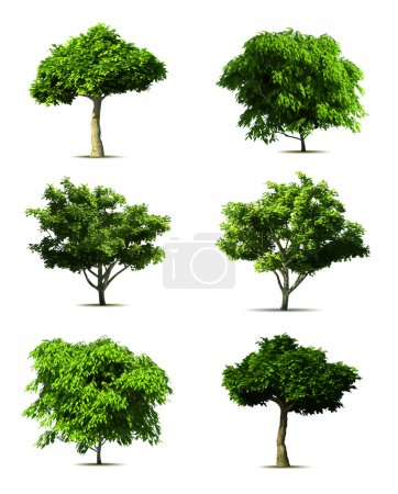 Illustration for Set 3d tree pack. Vector on white background - Royalty Free Image