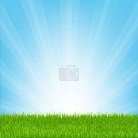 Illustration for Field of Grass, Vector Illustration - Royalty Free Image