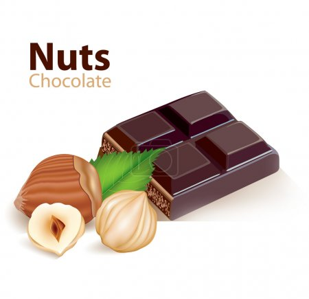 Photo for Vector Nuts and chocolate - Royalty Free Image