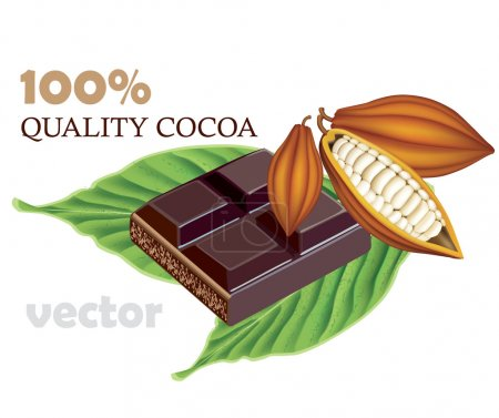 Photo for Cocoa beans with green With tile of black chocolate - Royalty Free Image