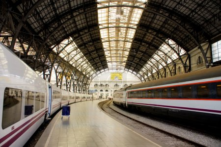 Trains in Barcelona. France Station.