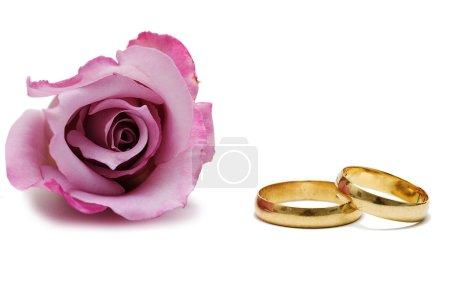 Wedding rings and pink rose.
