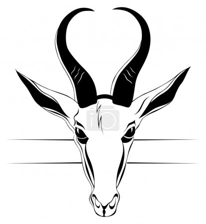 Illustration for Antelope head in vector - Royalty Free Image
