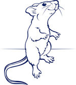 Cartoon rat or mouse in vector
