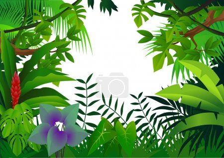 Illustration for Forest background - Royalty Free Image