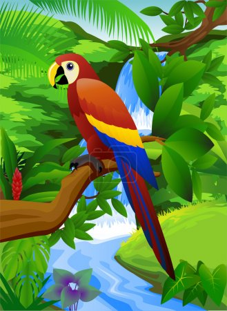 Parrot bird in the tropical forest