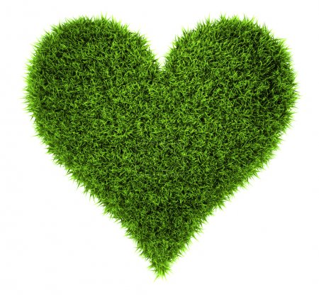 Photo for Grass heart isolated on white background, 3d render - Royalty Free Image