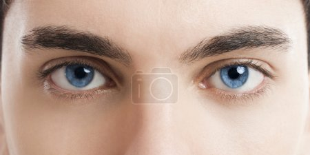 Photo for Close-up picture of blue eyes from a young man - Royalty Free Image