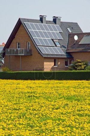 Foto de Hogar con paneles solares y un prado de diente de León - Imagen libre de derechos