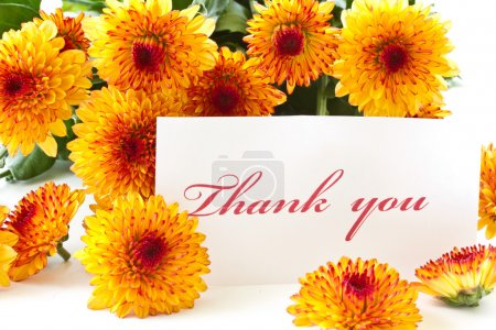 "Photo for ""thank you"" on a background of orange chrysanthemums - Royalty Free Image"