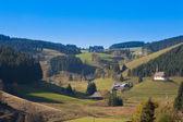 Black Forest Landscape