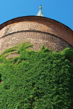 Ivy Covered Historic Tower in Riga, Latvia