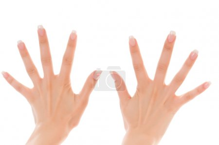 Photo for Two women's hands with fingers spread on a white background - Royalty Free Image