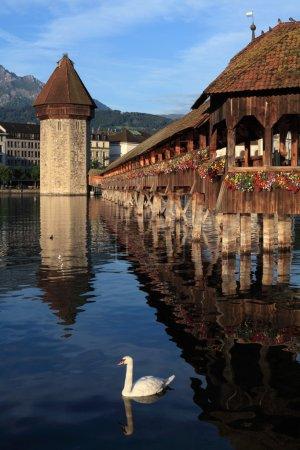 Photo pour Le pont de la Chapelle et le lac des Quatre-Cantons, dans la ville de Lucerne, Suisse. Photo prise tôt le matin lorsque le soleil commence à se lever . - image libre de droit