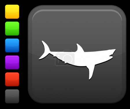 shark icon on square internet button