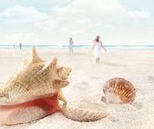 scène de plage avec marche et coquillages