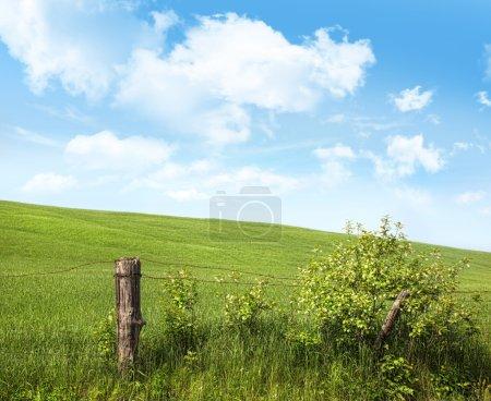 Photo pour Vieux pays clôture avec des fleurs contre un ciel bleu - image libre de droit
