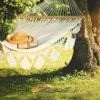 View of hammock and book on a sunny summer day...