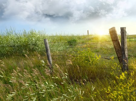 Photo for Old country fence on the prairies in Saskatchewan - Royalty Free Image